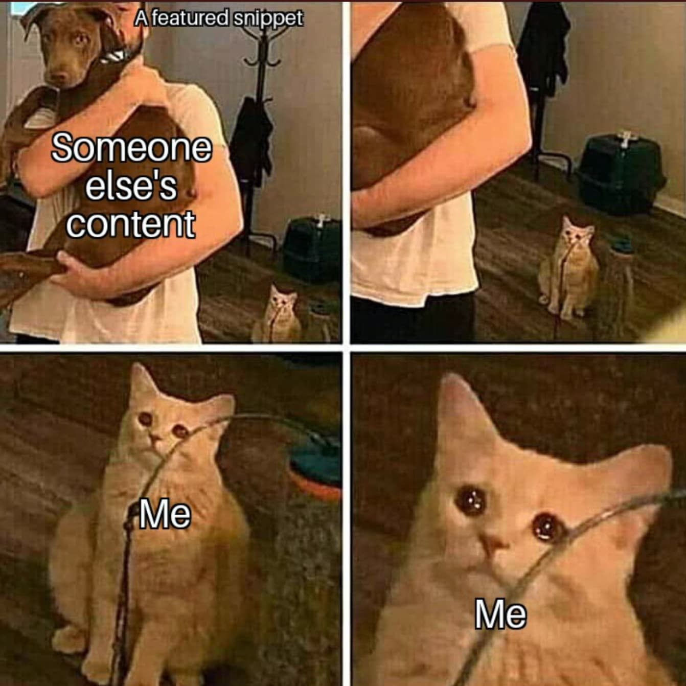 SEO Memes 32
